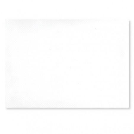Set de table en papier couleur blanc 30x40 Lot de 500